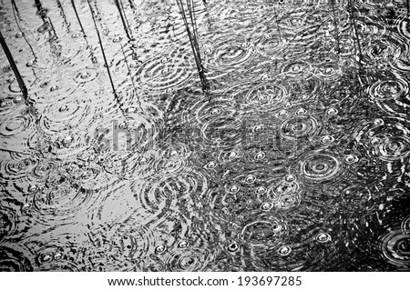Rain falls and splashing on a lilly pond - stock photo