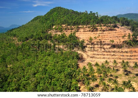 Rain forest destruction in thailand form Aerial  view - stock photo