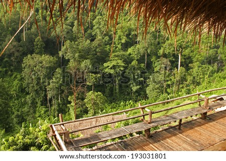 Rain forest village and homestead in northern Thailand in South East Asia - stock photo