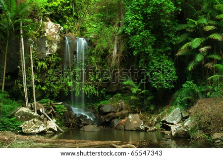 rain forest waterfall in Queensland, Australia - stock photo