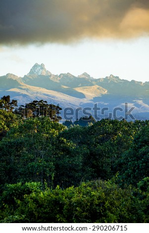 rain forest with mount kenya in background - stock photo