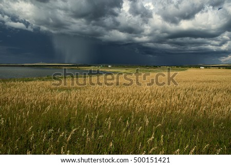Rain from the clouds over a lake. Khakassia. Russia.