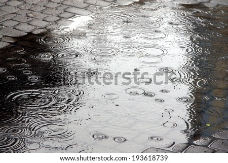 Rain in the city - stock photo