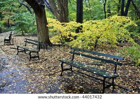 rain in the rambles in autumn Central Park - New York City - stock photo