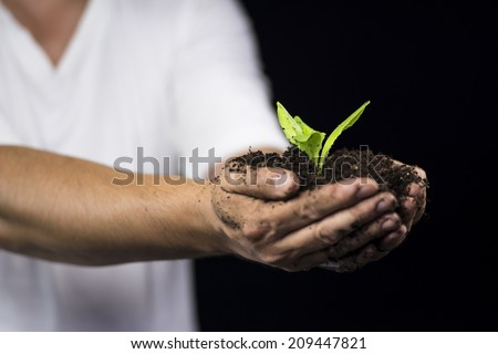 Rain on the plant in man hand - stock photo