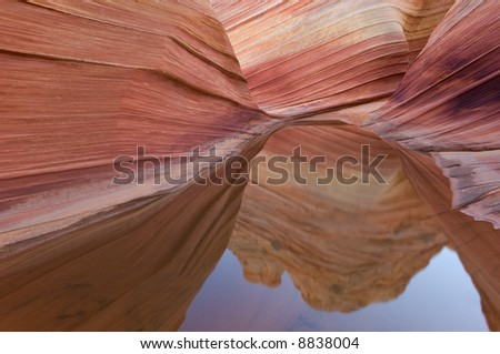 Rain Pool Coyote Buttes Paria Canyon-Vermillion Cliffs Wilderness Area, Arizona, USA