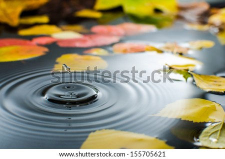 Rain splashing into a pond in the fall - stock photo