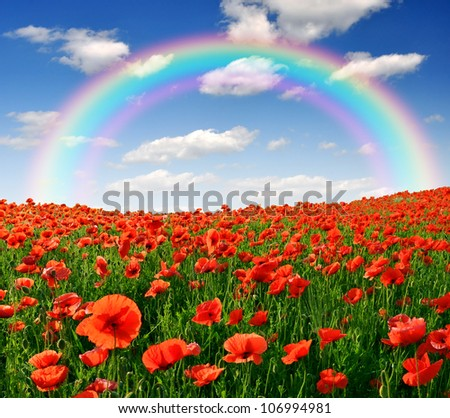rainbow above the spring landscape with red poppy - stock photo