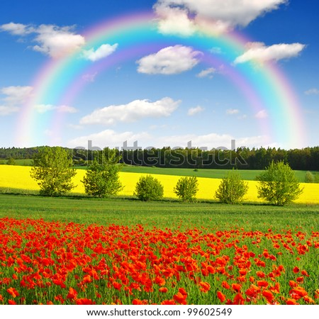 rainbow above the spring landscape with red poppy field - stock photo