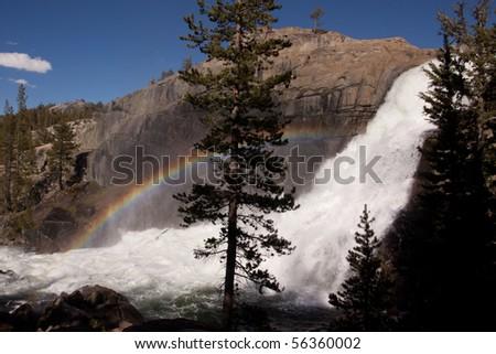Rainbow and Pine Tree at Tuolumne Falls - stock photo