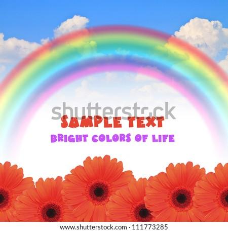 rainbow blue summer sky color Gerbera bright flower - stock photo