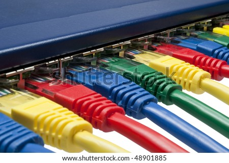 Rainbow colors computer network plugs connected to a router / switch isolated on white background
