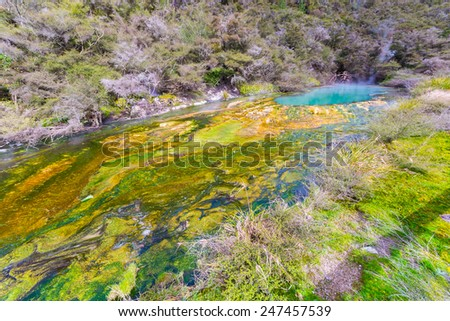 Rainbow crater in Waimangu Volcanic Valley, a steaming hot spring with acid flowing water, deposits of colorful silica mineral mixed with algae. New Zealand, Rotorua region. - stock photo