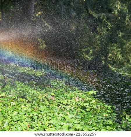 rainbow during rain in garden in sunny autumn day, Crimea - stock photo