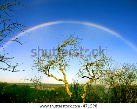 Rainbow in early morning from Victoria Falls spray - stock photo