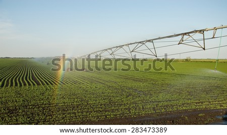 Rainbow on the sprinkler system crops - stock photo