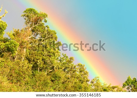 Rainbow over african rainforest. Natural background from wilderness. - stock photo