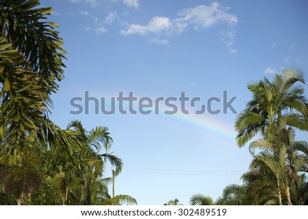 Rainbow, palm trees and blue sky, Cairns, Queensland, Australia -2 - stock photo