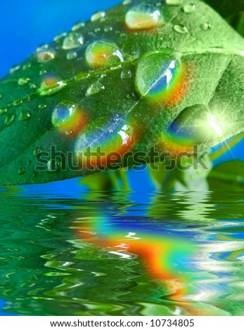 Rainbow reflexions in water drops - stock photo