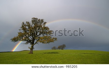 Rainbow scene on a country landscape - stock photo