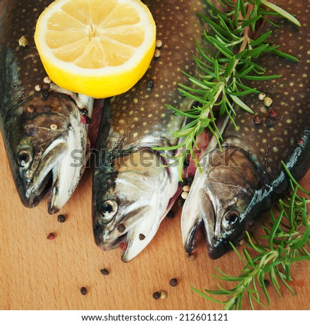 Rainbow trout with fresh herbs. - stock photo