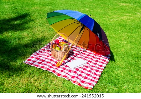Rainbow umbrella, book and Picnic basket with fruits on the grass