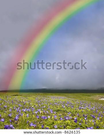 rainbow under the field - stock photo