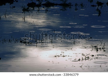 Raindrops on the lake. Weather - stock photo