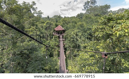 Rainforest Canopy Walkway & Rainforest Canopy Stock Images Royalty-Free Images u0026 Vectors ...