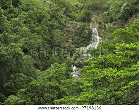 rainforest in the Barron Gorge, Cairns, North Queensland, Australia - stock photo