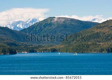Rainforest in the Gulf of Alaska - stock photo