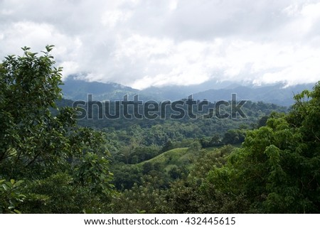 Rainforest (Lake Arenal, Costa Rica)