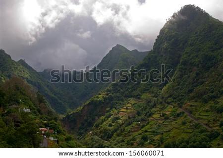 Rainforest of Madeira viewed from Ribeiro Frio, Portugal - stock photo