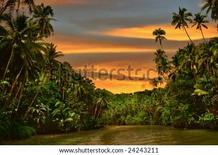 Rainforest river cruise in sunset light - stock photo