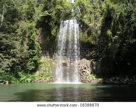 Rainforest waterfall - stock photo