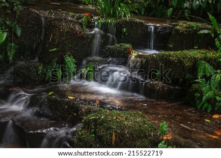 rainforest waterfall and rocks covered with moss - stock photo