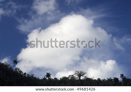rainforest with spectacular Caribbean skies in Escambray,  Cuba - stock photo