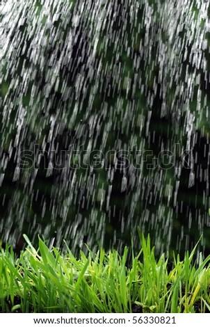 raining on grass rain - stock photo