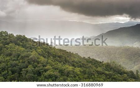 raining over evergreen forest mountain - stock photo