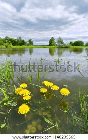 Rainy summer. A flooded meadow. River Sukhodrev, Kaluga region, Russia - stock photo