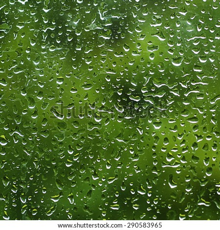 Rainy wet green eco seasonal summer natural background with water drops - stock photo