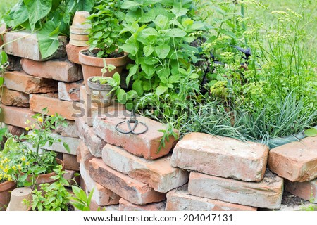Raised bed with herbs/herbs/garden - stock photo