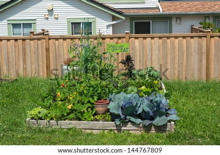Raised beds in a vegetable community garden - stock photo