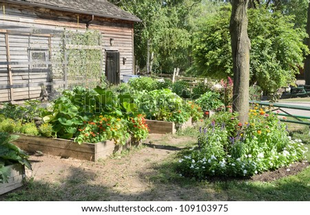 Raised beds in vegetable garden - stock photo
