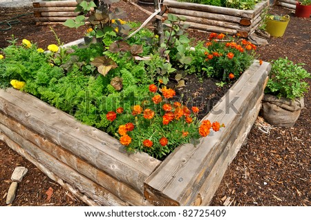 raised flower bed in wooden frame - stock photo