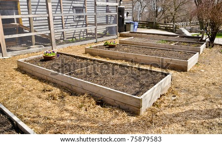raised flower beds in wooden frame - stock photo