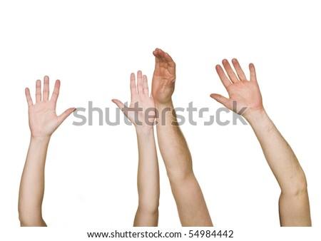 Raised Hands isolated on white background - stock photo