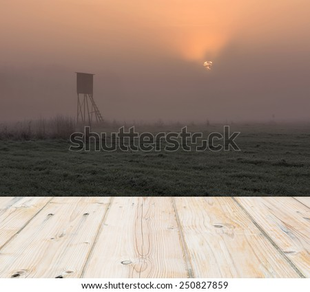raised hide at foggy sunrise with wooden planks floor on foreground - stock photo