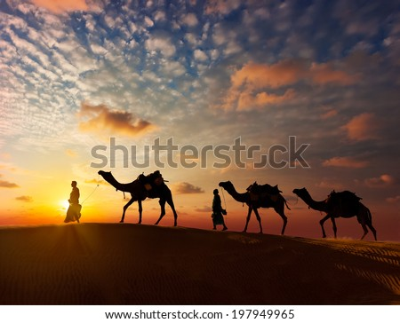 Rajasthan travel background - two indian cameleers (camel drivers) with camels silhouettes in dunes of Thar desert on sunset. Jaisalmer, Rajasthan, India - stock photo