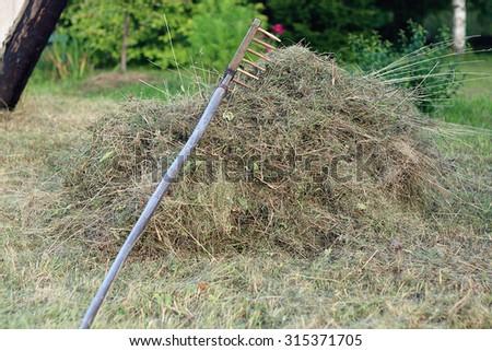 rakes hay field landscape - stock photo